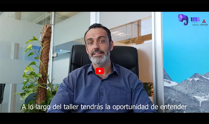 Imagen web blog video ICM Taller implantacion cultura mentoring ML International Mentoring School